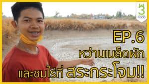 รับจัดบุฟเฟต์อาหารไทยพร้อมเสน่ห์ของอาหารไทยที่น่าค้นหา